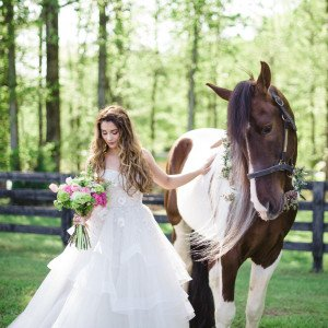 An Equestrian Affair at High Shoals Farm