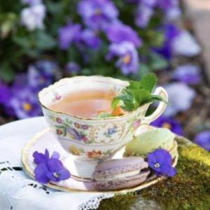 Teacup-purple-english